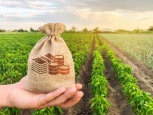 Erbschaftsteuer Landwirtschaft